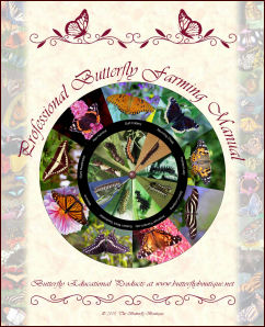 Professional Butterfly Farming Manual