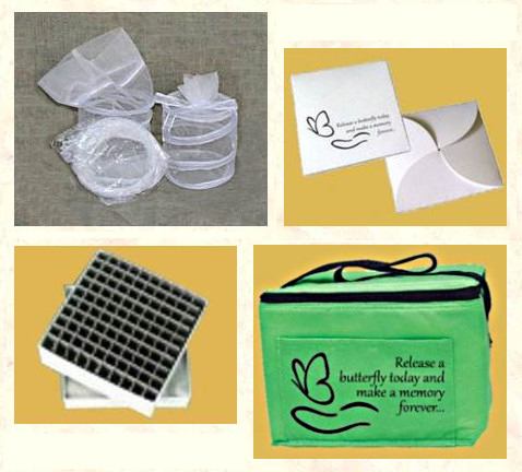 Butterfly Farming Supplies
