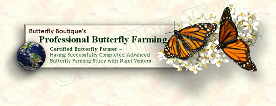 Professional Butterfly Farmer Certificate (sample)